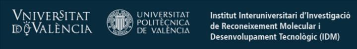 Logotipo UPV - IDM